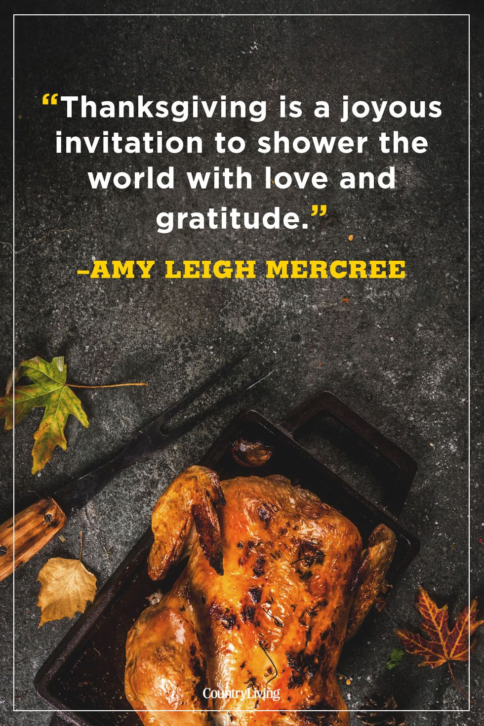 thanksgiving quotes gratitude