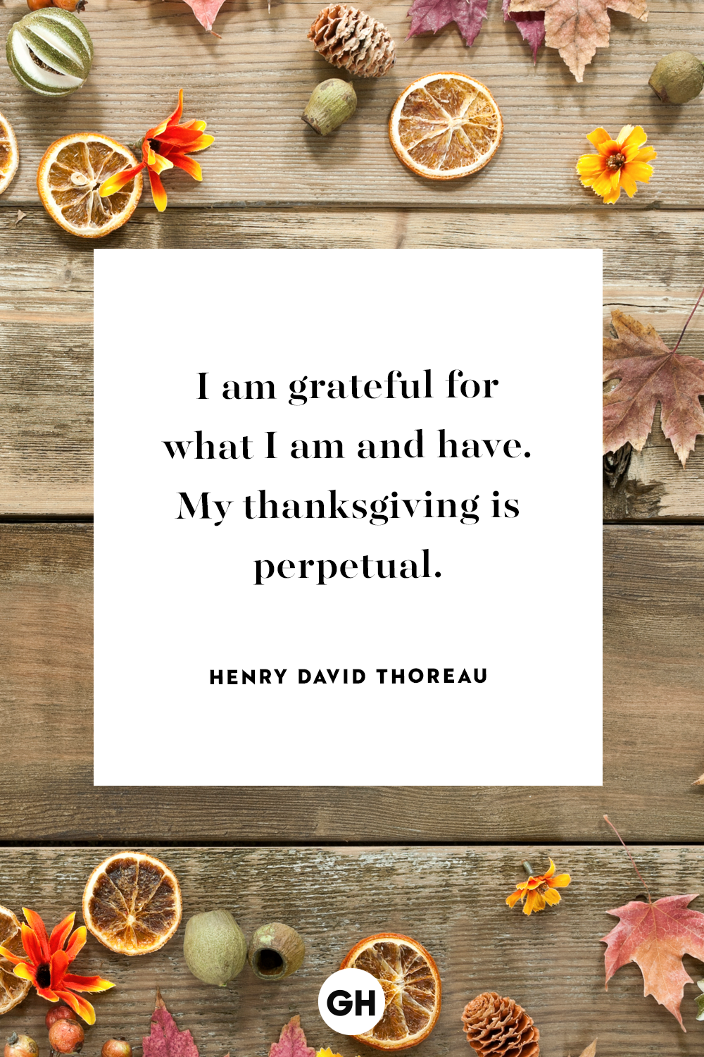 12 Best Thanksgiving Quotes - Inspirational and Funny Quotes About