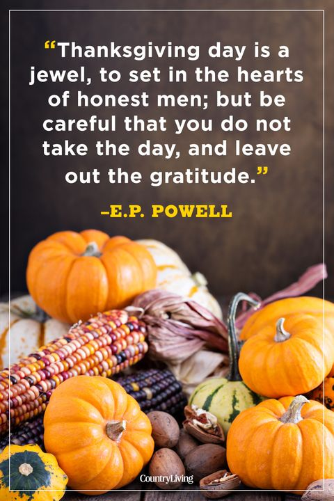 80 Best Thanksgiving Quotes Happy Thanksgiving Toast Ideas