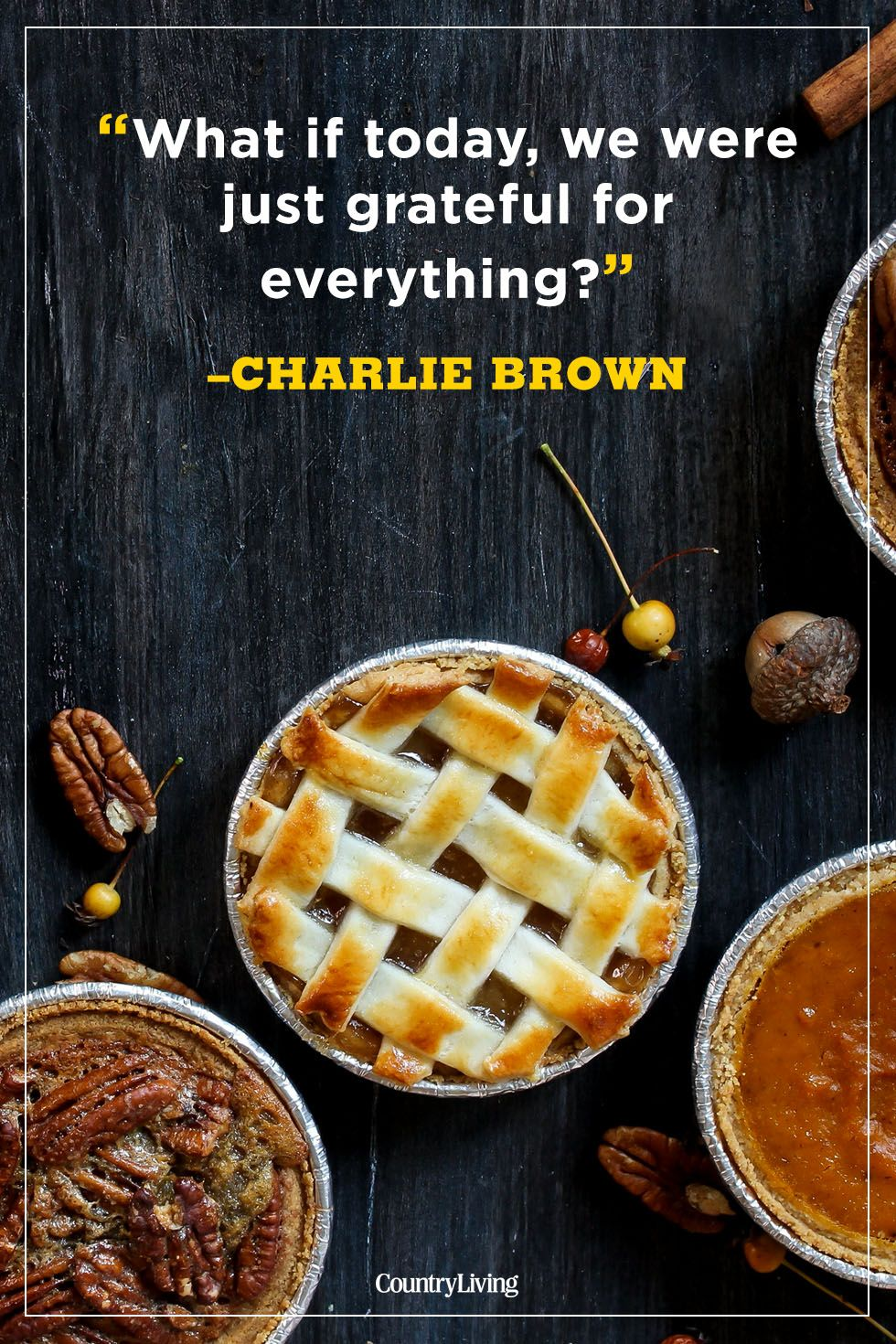 thanksgiving quotes charlie brown