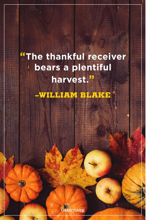 73 Best Thanksgiving Quotes - Happy Thanksgiving Toast Ideas