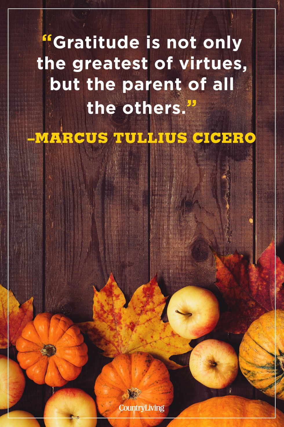 Thanksgiving Quotes 50 Best Thanksgiving Day Quotes   Happy Thanksgiving Toast Ideas Thanksgiving Quotes