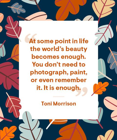 toni morrison gratitude thanksgiving quote