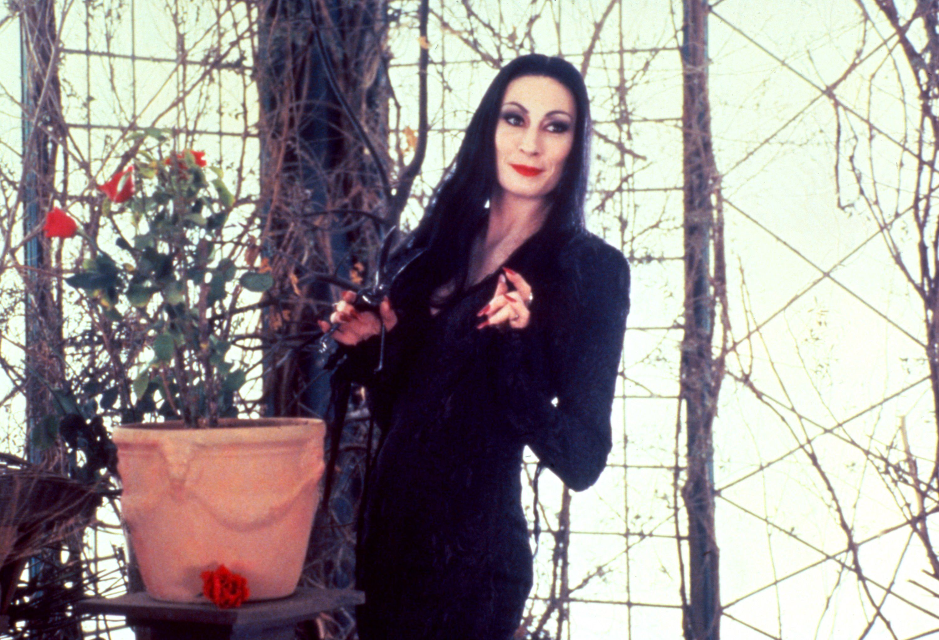 How The Addams Family Turned Morticia And Wednesday Into Halloween Icons