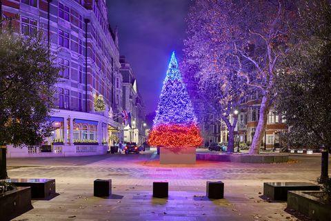 Connaught Hotel Christmas tree photo