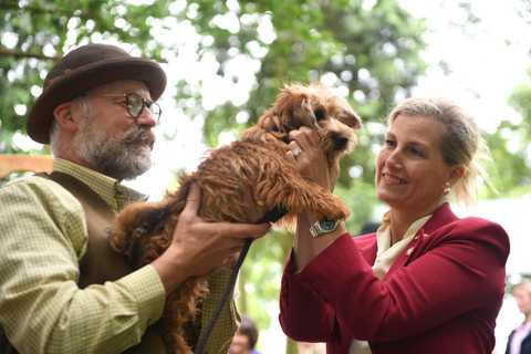 sophie countess of wessex pets dog