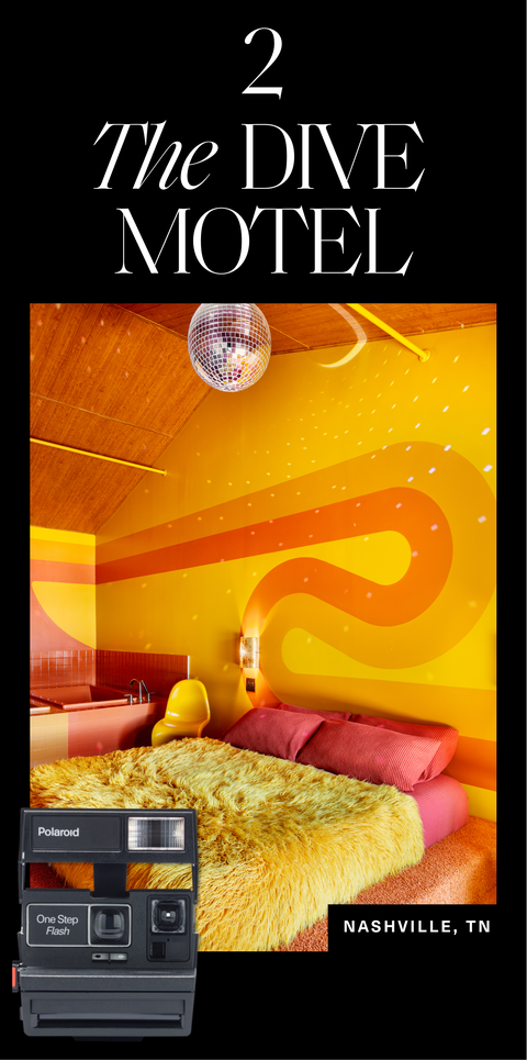 courtesy the dive motel, ben fitchett