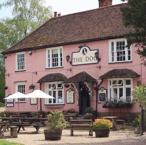 The best dog-friendly pubs in the UK