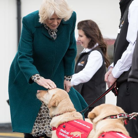 Royal visit to Milton Keynes