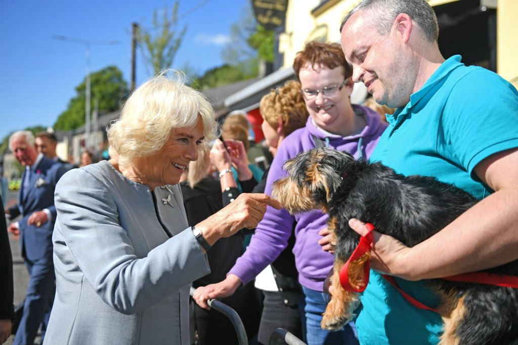 All the Photos of Prince Charles and Camilla's Quick Tour of Northern Ireland