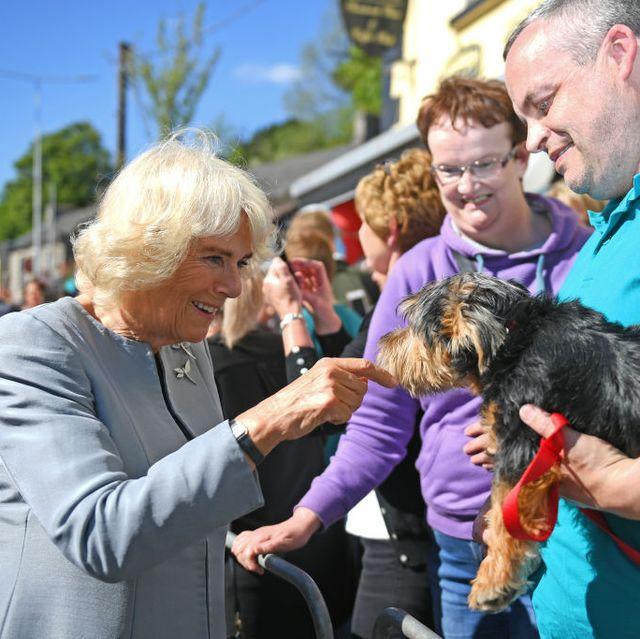 Royal visit to Northern Ireland - Day 1