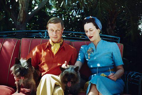 公爵穿紅色衣服夫人穿藍色洋裝