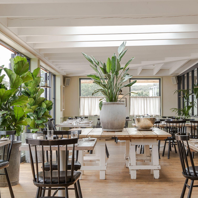 sustainable restaurants