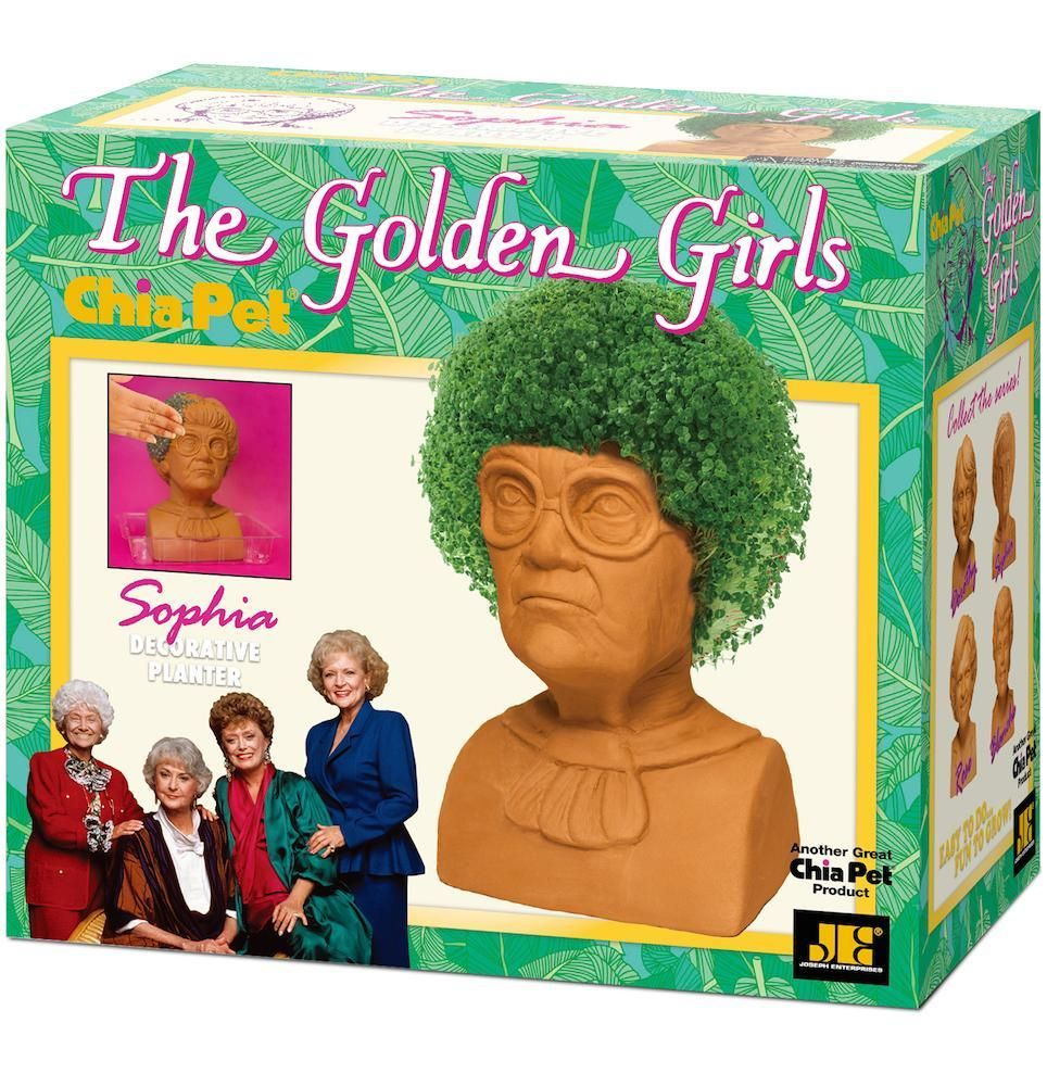 'Golden Girls' Chia Pets Exist, And You'll Want to Grow All 4 of Them