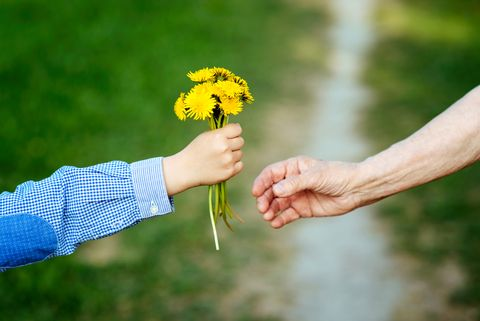 the grandson gives to the grandmother flowers, 敬老の日, プレゼント, ギフト