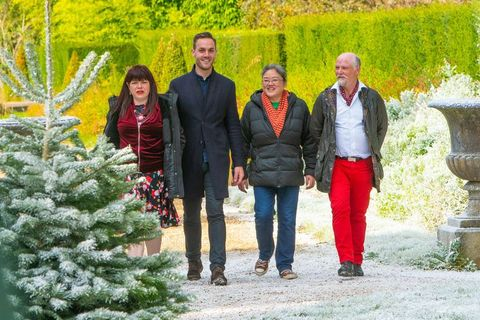 Great Christmas Bake Off air date, cast, judges and ...
