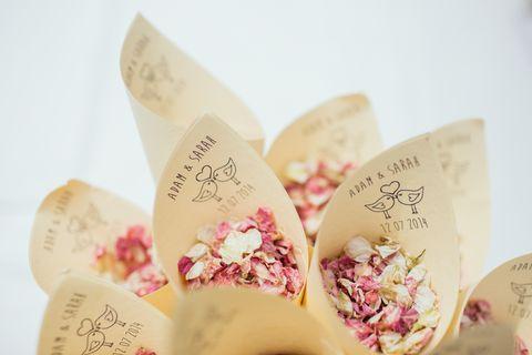 Pink, Petal, Butterfly, Flower,