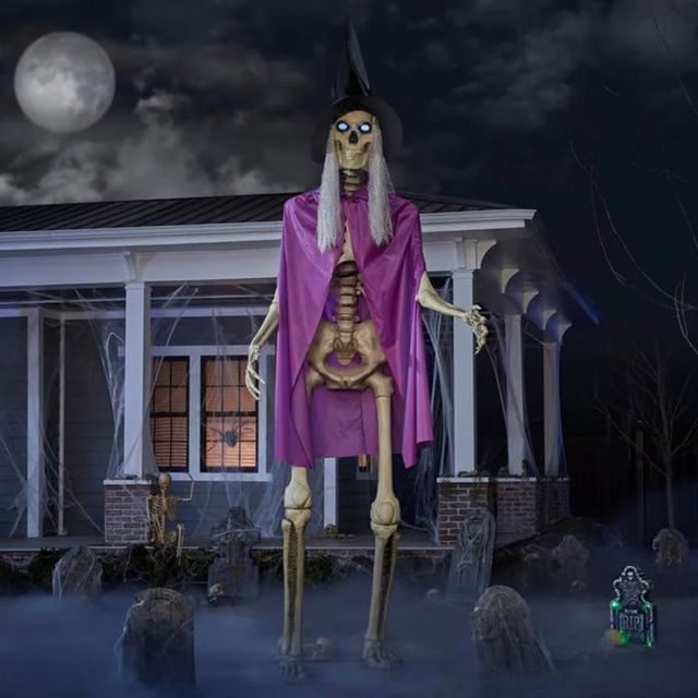 the home depot 12 foot skeleton witch costume kit