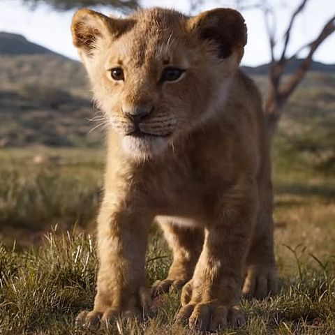 This Lion King fan theory will ruin your childhood