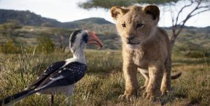 the-lion-king-in-bioscoop
