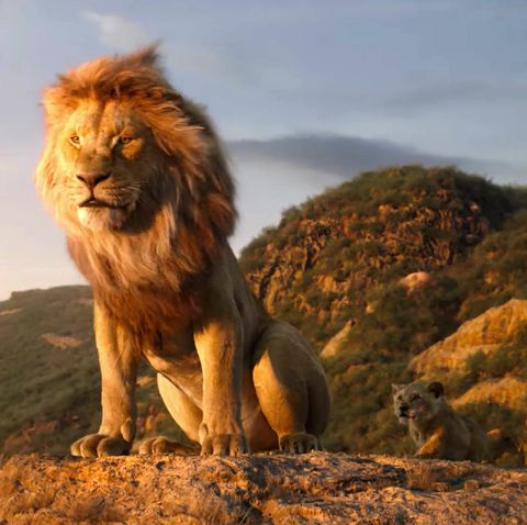 Disney's new Lion King movie won't be changing anything about one classic  character