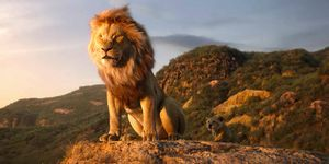 Mufasa and Simba on Pride Rock, The Lion King