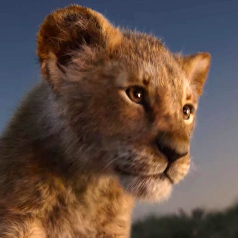 The Lion King Soundtrack Confirms The Classic Songs Coming