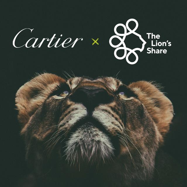 カルティエ、地球規模の自然危機に取り組む 「ライオンズシェア基金」に加盟