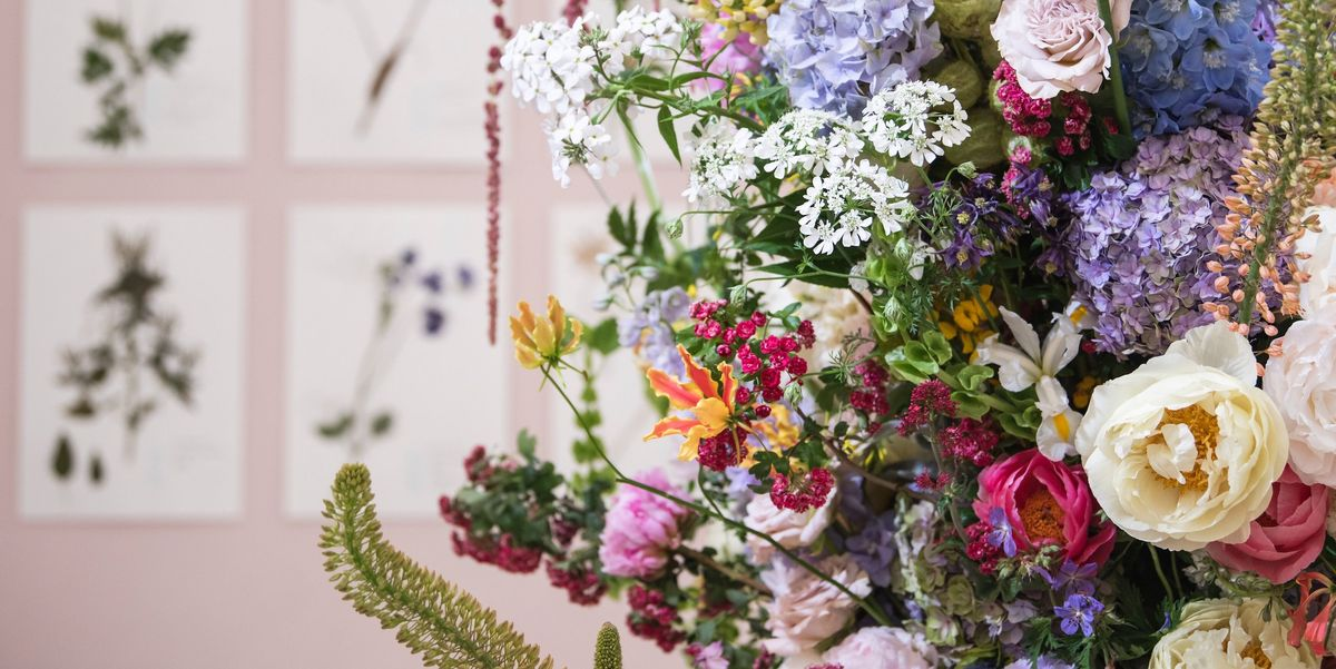 Rhs Chelsea Flower Show 2019 Top 12 Highlights