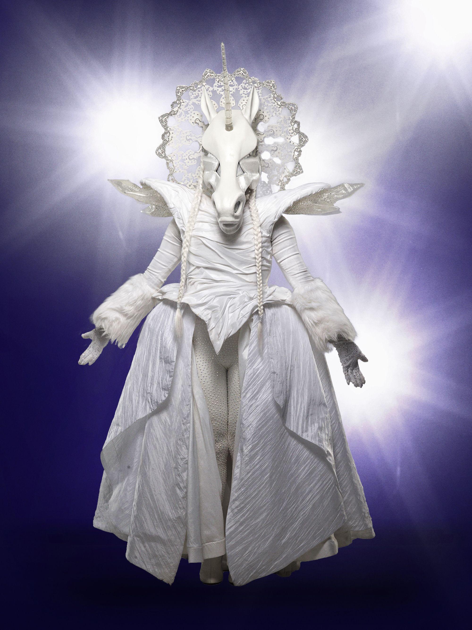 12 \u0027Masked Singer\u0027 Costumes for Halloween 2019 , How to DIY