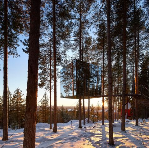 First-ever virtual holiday Lapland