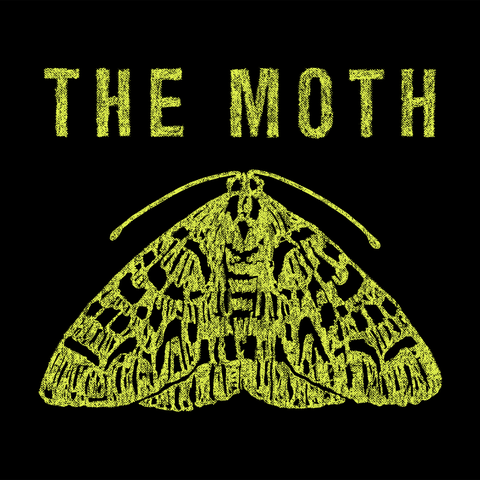 Moth, Moths and butterflies, Insect, Font, Symmetry, Organism, Illustration, Pollinator, Logo, Invertebrate,