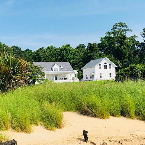Sand, Vegetation, Beach, Natural environment, Shore, Coast, Grass family, Tree, House, Grass,