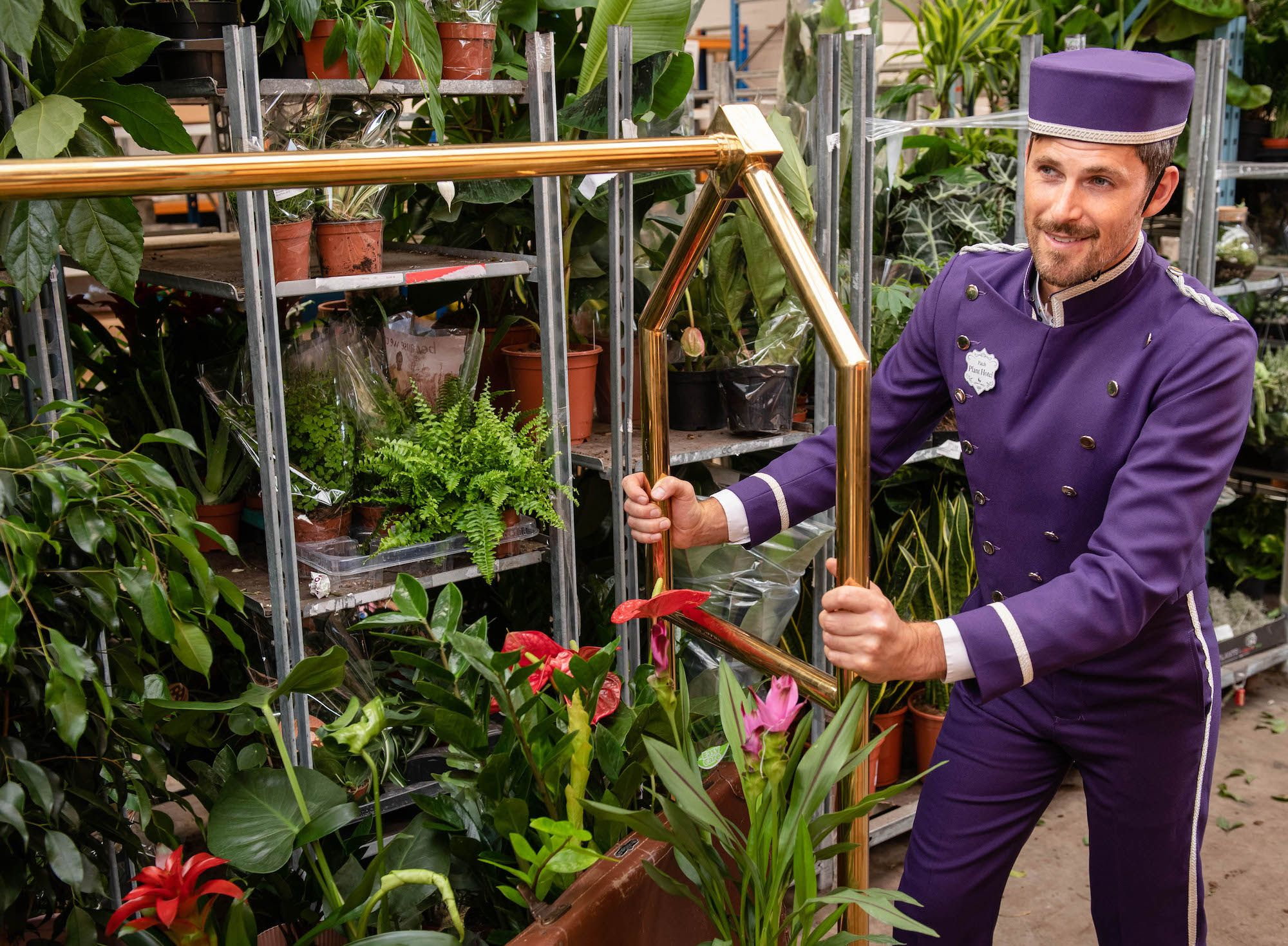 The world's first hotel for houseplants has just opened in London