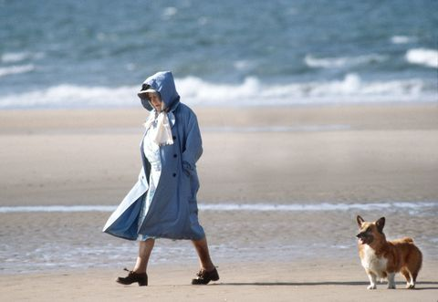 Queen Mother Corgi Beach