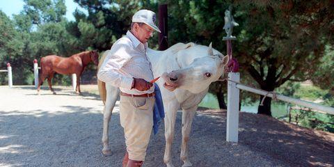 """President Reagan feeding his horse """"El Alamein"""" at Rancho Del Cielo"""
