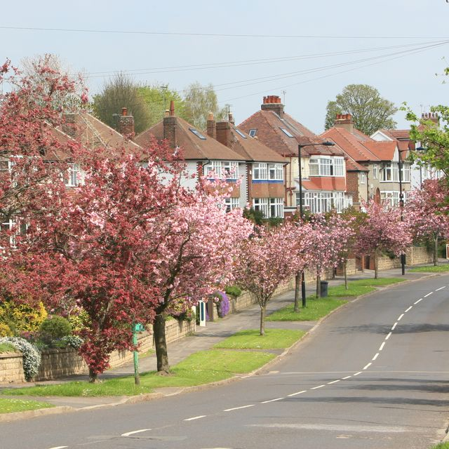 the street, bents green, sheffield suburb, south yorkshire