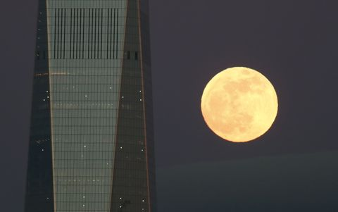 blood moon january 2019 ontario - photo #23
