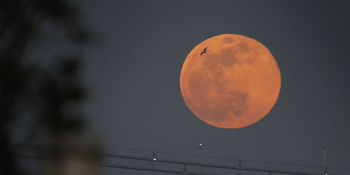 何時 満月 今日 の 【みんなの知識 ちょっと便利帳】現在の月・今日の月・きょうの月・月齢
