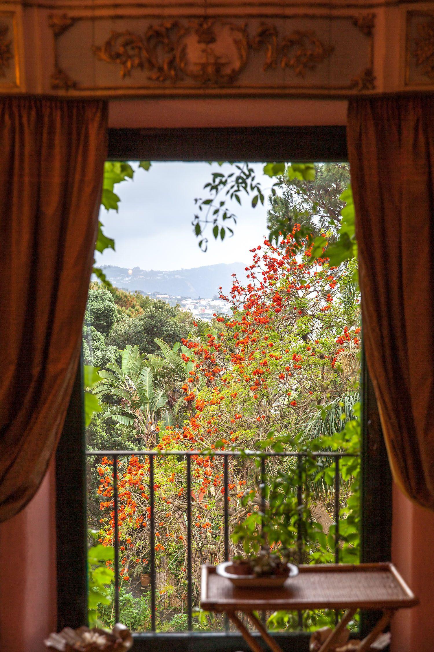 I Giardini La Mortella a Ischia tra magnolie orientali, glicini e camelie