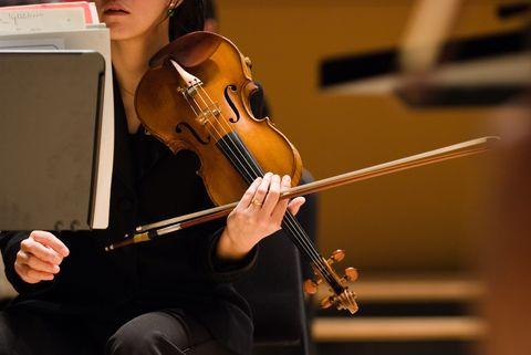 The violinist 2