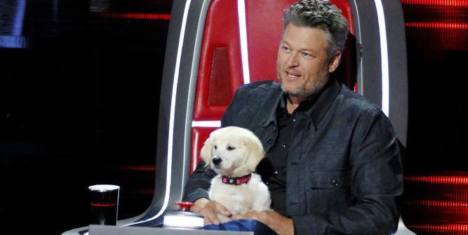 Blake Shelton May Have Taken One of His Jokes Way Too Far on 'The Voice'