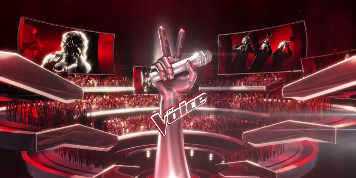 The.Voice.S06E10.HDTV.x264-2HD.mp4 Download