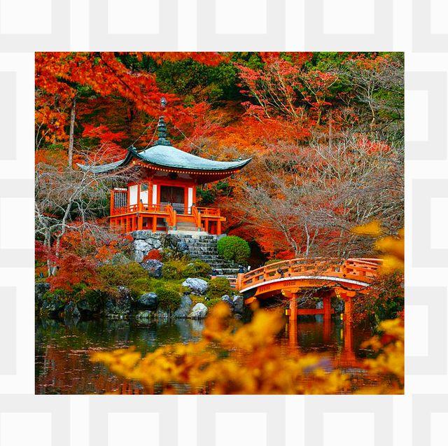 Natural landscape, Nature, Reflection, Tree, Lake, Sky, Autumn, Leaf, Landscape, State park,