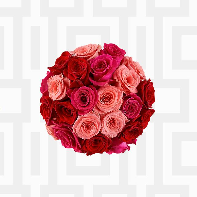 Perfume, Red, Beauty, Product, Rose, Pink, Flower, Cosmetics, Plant, Petal,