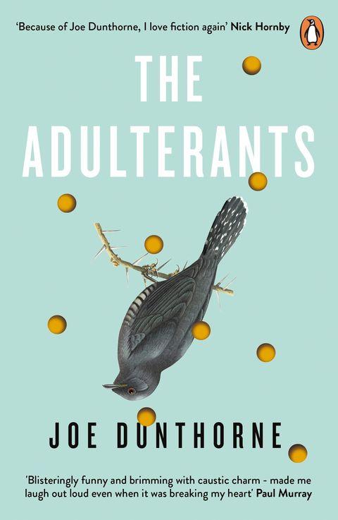 the adulterants by joe dunthorne book jacket