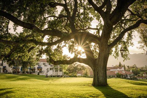 where to go in september 2020 ojai california