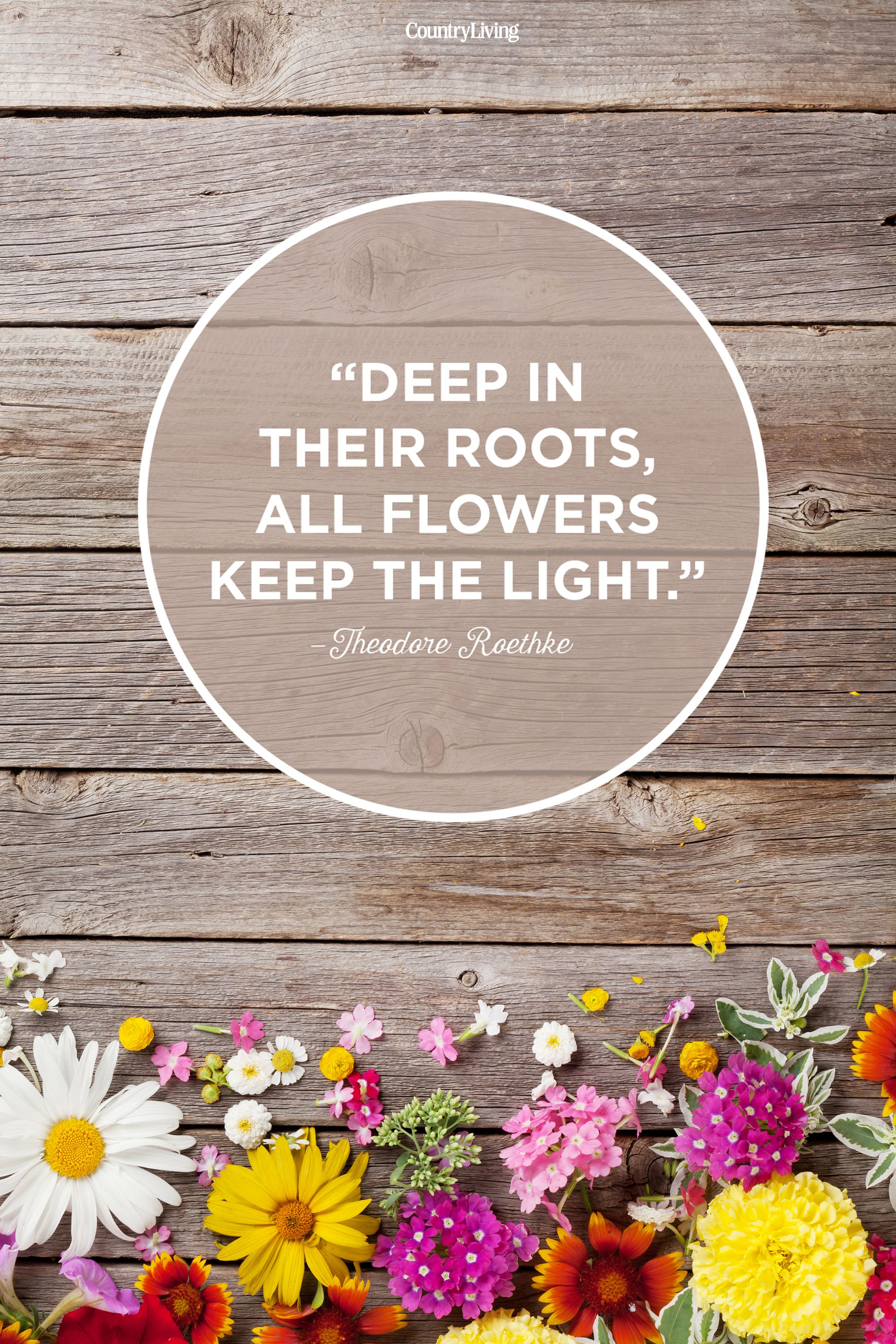 20 Happy Spring Quotes Motivational Sayings About Spring