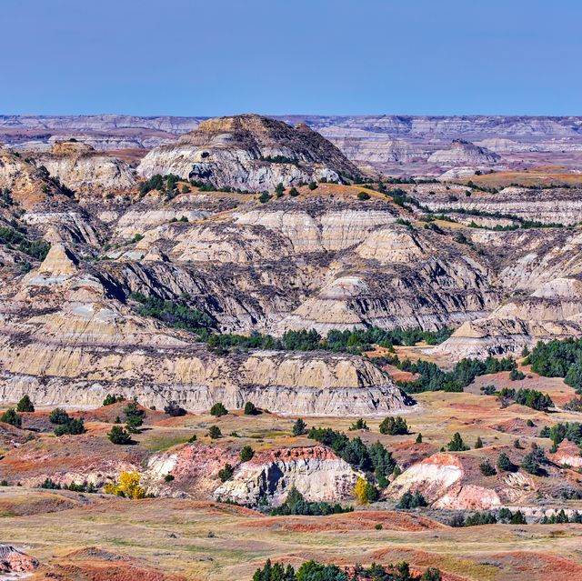 theodore roosevelt national park,north dakota,usa