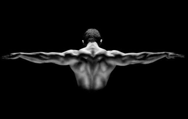 上半身 ムキムキ,10分間トレーニング,上半身 筋トレ